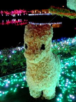 東武動物公園0709.jpg