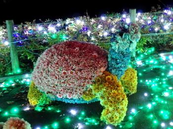東武動物公園0714.jpg