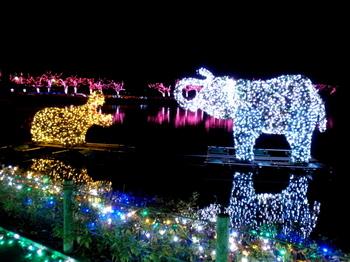 東武動物公園0730.jpg