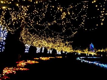 東武動物公園1268.jpg