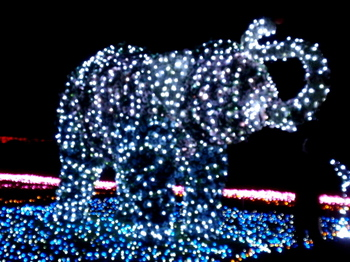東武動物公園1339.jpg