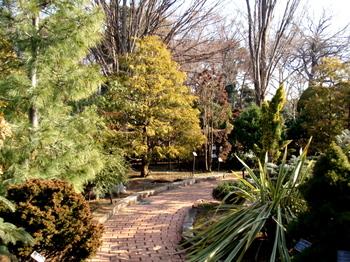 花と緑の振興センター0095.jpg
