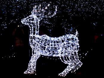Merry Christmas0156.jpg