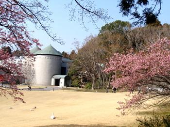DIC川村記念美術館0357.jpg