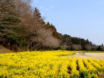 DIC川村記念美術館0362.jpg