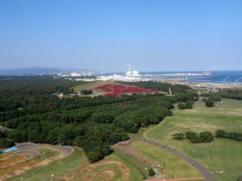 国営ひたち海浜公園1023.jpg