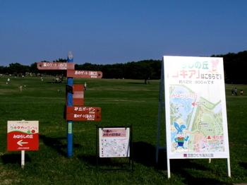 国営ひたち海浜公園1041.jpg
