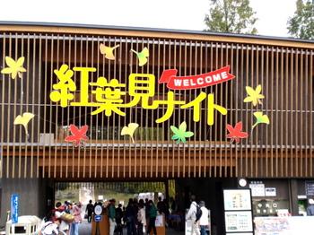 国営武蔵丘陵森林公園0002.jpg