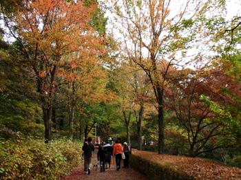 国営武蔵丘陵森林公園0008.jpg