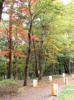 国営武蔵丘陵森林公園0039.jpg