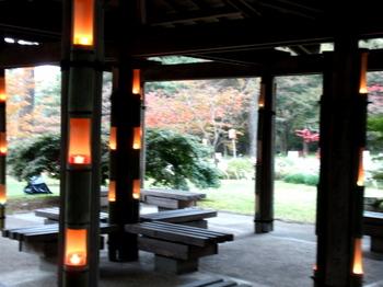 国営武蔵丘陵森林公園0299.jpg