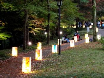 国営武蔵丘陵森林公園0363.jpg