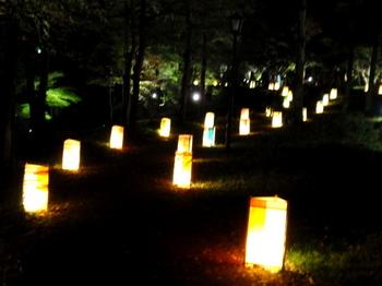 国営武蔵丘陵森林公園0424.jpg