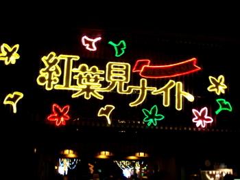 国営武蔵丘陵森林公園0574.jpg