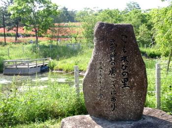 昭和記念公園0099.jpg