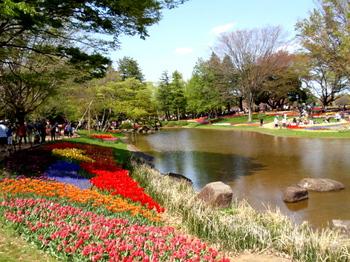 昭和記念公園0103.jpg