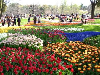 昭和記念公園0108.jpg