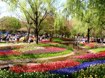 昭和記念公園0155.jpg