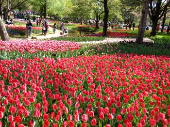 昭和記念公園0214.jpg