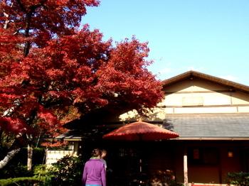 昭和記念公園0281.jpg