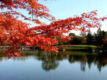 昭和記念公園0292.jpg