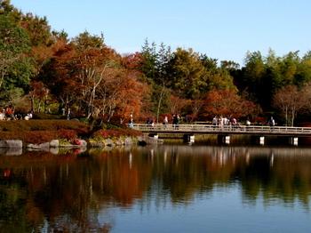 昭和記念公園0301.jpg