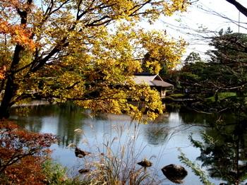 昭和記念公園0308.jpg