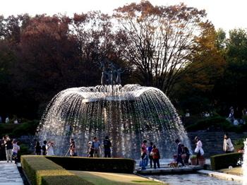 昭和記念公園0415.jpg