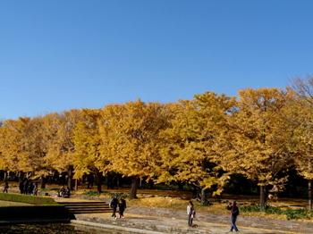 昭和記念公園0833.jpg