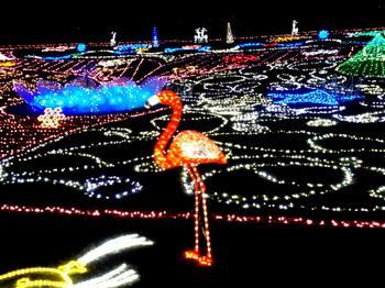 昭和記念公園0900.jpg