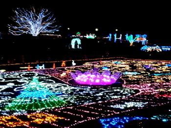 昭和記念公園0932.jpg