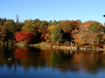 昭和記念公園0968.jpg