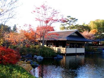 昭和記念公園0979.jpg