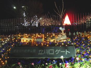 昭和記念公園1117.jpg