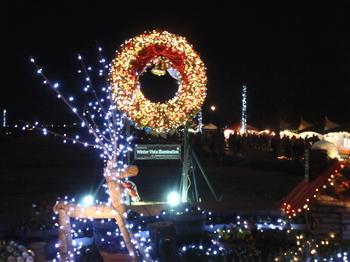 昭和記念公園1127.jpg