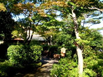 昭和記念公園1331.jpg