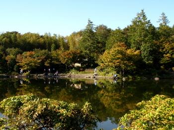 昭和記念公園1358.jpg