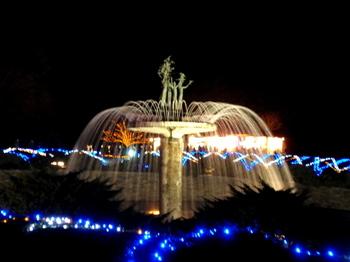 昭和記念公園1458.jpg
