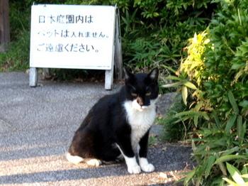 昭和記念公園1468.jpg