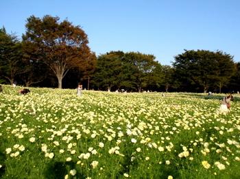 昭和記念公園1472.jpg