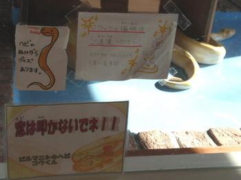 東武動物公園1012.jpg