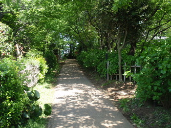 興禅院0297.jpg