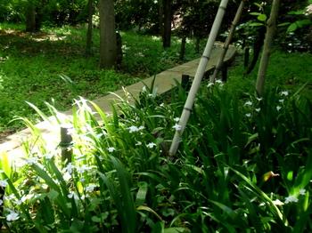 興禅院0308.jpg
