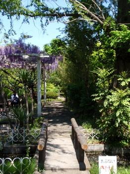 花と緑の振興センター0145.jpg