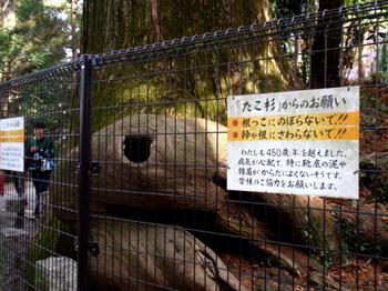 高尾山0016.jpg